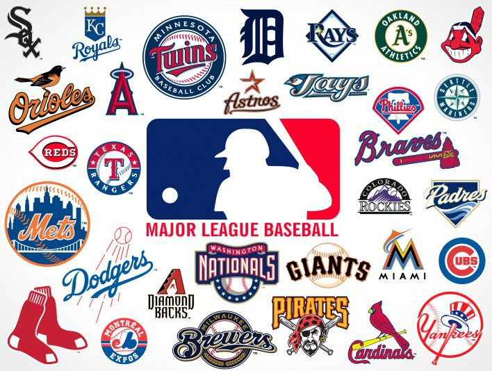 Licensed MLB Fleece Fabric