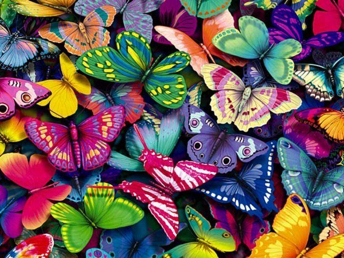 Butterfly Anti-pill Fleece Fabric