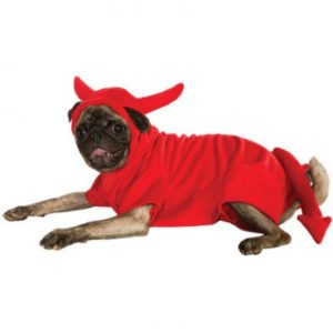 Devilishly Cute Dog Costume