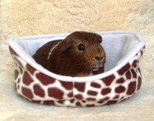 Guinea Pig Fleece Cuddle Cup