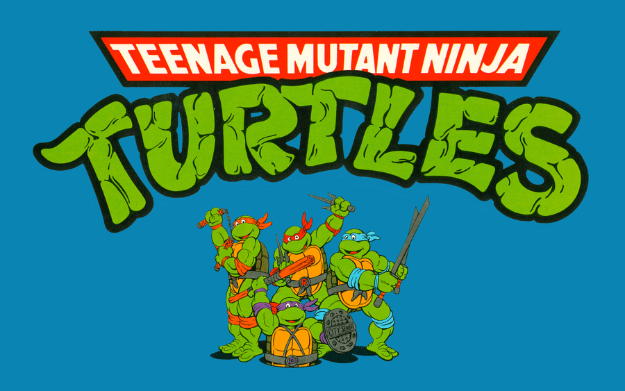 TMNT Fleece Fabric
