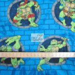 TMNT Turtle Power Anti-pill Fleece Fabric