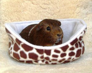 Guinea Pig Fleece Cuddle Cup